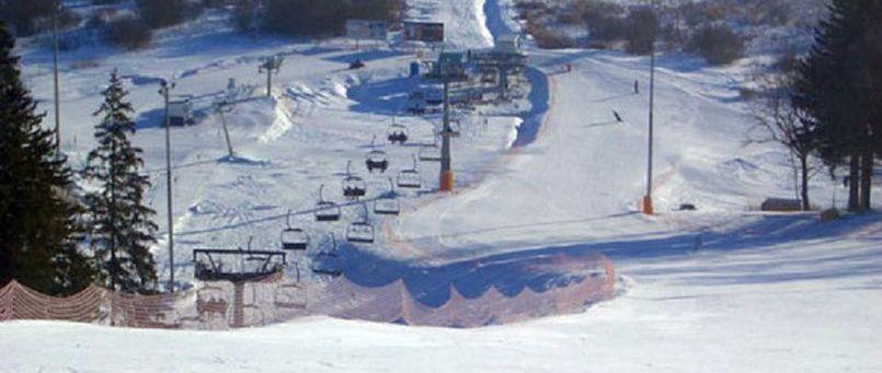 гей форум беговые лыжи подмосковье
