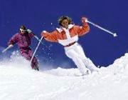 Пара лыжников в поисках шишек