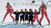 Молодые лыжницы с выводком