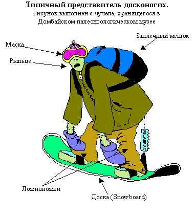 Смешные картинки про сноубордистов, магазины продаже открыток