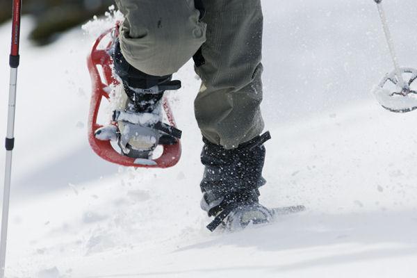 snowshoe tracks essay