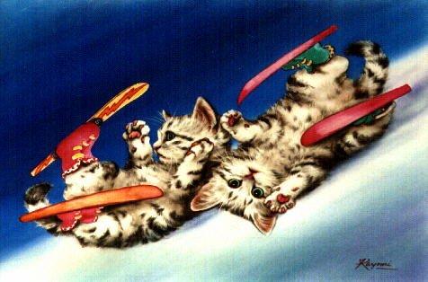 менее, главным картинки котята на лыжах нет оснований