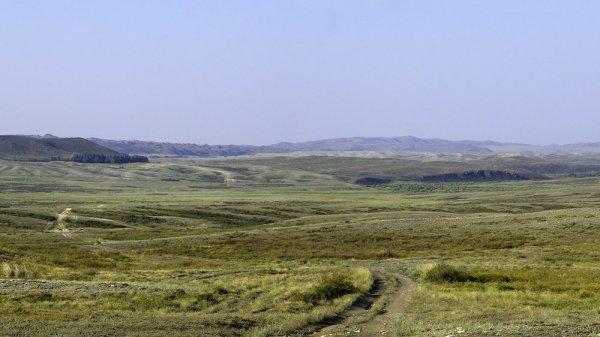 Дорога Горное - Черняевка.