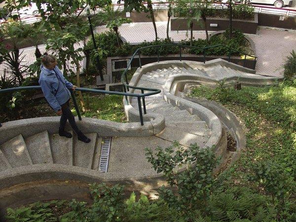 Гонконг. В университетском кампусе.