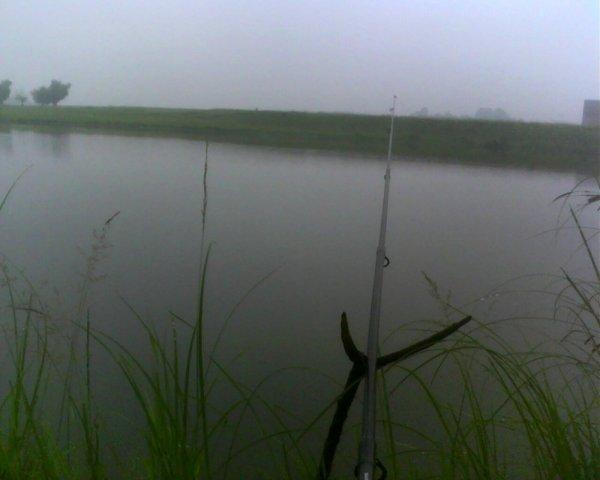 удачные неудачные дни для рыбалки